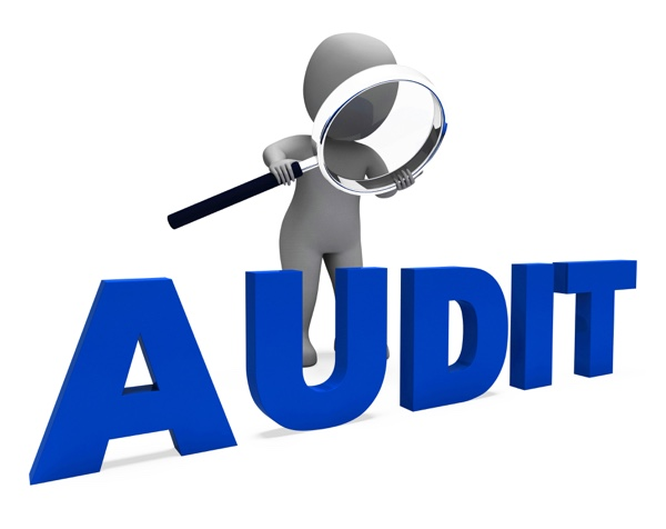 What is auditing? What are the differences between auditing and accounting? 2